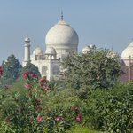 View of the Taj Mahal from hilltop on the nature walk
