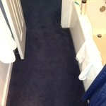 Carpeted bathroom extends from toilet-->sink-->bathtub-->room. Damp carpet = mildew and mold. Gr
