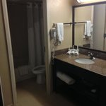 Foto van Holiday Inn Express Hotel & Suites Midtown