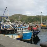 Mallaig harbour - 2 mins from cottage