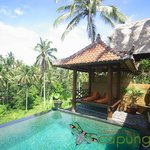 Capung Sakti Villa and Spaの写真