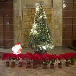  Christmas Tree Decoration at the Lobby Area