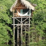 ‪Juma Amazon Lodge‬