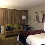 Foto de Detroit Marriott Livonia
