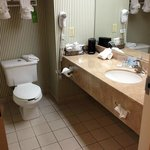 Hampton Inn Savannah-I-95/Richmond Hillの写真