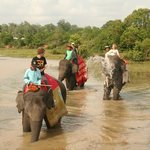  on the back of an elephant through the river