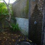 Outdoor bathrooms (very private)