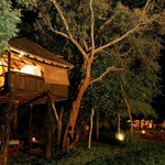 Ivory Lodge (Hwange Natinal Park )