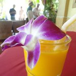  Delicious mango shake!