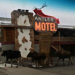 Friendship Inn Antler