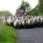 Rush hour in Greenhead, UK.