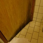  Mold at the bathroom door.