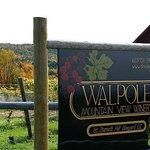Walpole Mountain View Winery