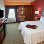 Foto di Hampton Inn Youngstown West I-80