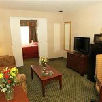  2-Room Suite / Living Room