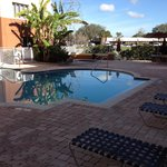 Holiday Inn Express Clearwater East - ICOT Center Foto