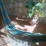 Swinging in the breeze - hammock style