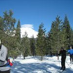 Mt. Shasta Nordic Center