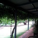 The lovely cool verandah