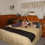 Kiama Bed & Breakfast Foto