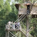 Tree Top House , an unique experience !!