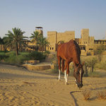 Al Sahra Desert Resort