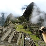 Photo of Tour Machu Picchu Best Day Tour