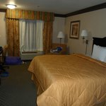 Comfort Inn and Suites near Universal Studios照片