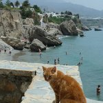  One of the beaches of Nerja