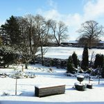 Winter scene of garden. We are open all Year