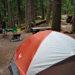 Photo de Ohanapecosh Campground