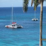 We could see these catamarans each day from our balcony
