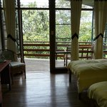 Super comfortable room with view of amazing plantlife all around