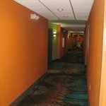 Foto di Comfort Suites at Fairgrounds - Casino