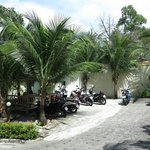                    front of hotel/bike rental