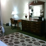 Foto de BEST WESTERN PLUS Spring Hill Inn & Suites