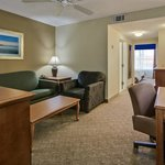  Onebedroom Suites Common Space!!