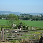  South Littleton Holiday Cottages - View from the garden