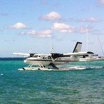  view of seaplanes landing