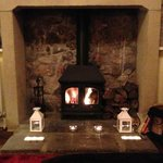                    Log Burner