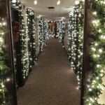 During the festival of trees, hallway leading to old Indiana Hotel Lobby which is part of the th