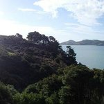  Panoramic view from the deck of the top room