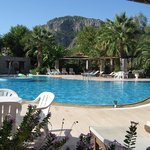                    View of Holiday Calbis pool