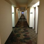 Foto de SpringHill Suites Washington