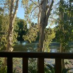 Billabong Bed & Breakfast Foto