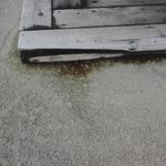                    Rotting dirty wood around Hot Tub