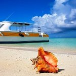 ‪Caicos Dream Tours‬