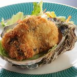 Rock Oyster (delicacy from Nishinoshima)