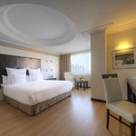 Altinel Hotel Ankara