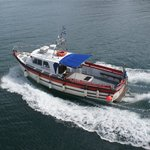 Castle Charter & Marine Service
